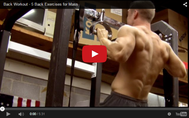 Back Workout - 5 Back Exercises for Mass