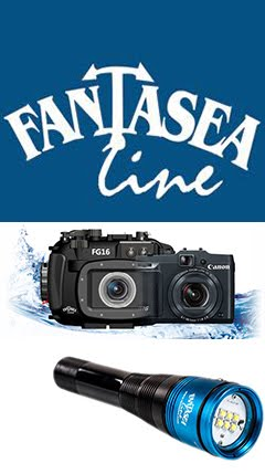 www.fantasea.com