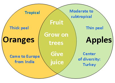 apples and oranges compare and contrast essays