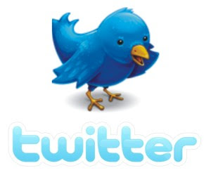 Aqui, estou no twitter!