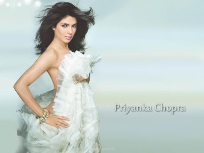 Priyanka Chopra Spicy Wallpaper in Don 2