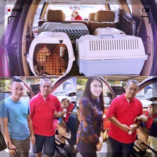 Siapa JamilKucing? Jamil Kucing pencinta haiwan yang selamatkan kucing terbiar dan kucing buangan, JamilKucing bersama buah hati beruk JK dan Shaki dalam Majalah 3, cara salurkan bantuan derma kepada JamilKucing, facebook twitter blog JamilKucing