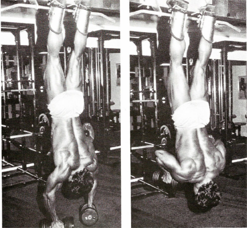 T Bar Row Sufficient Replacement For Barbell Row Fitness: Strength Basics: Forgotten Exercises: Hanging Dumbbell Rows