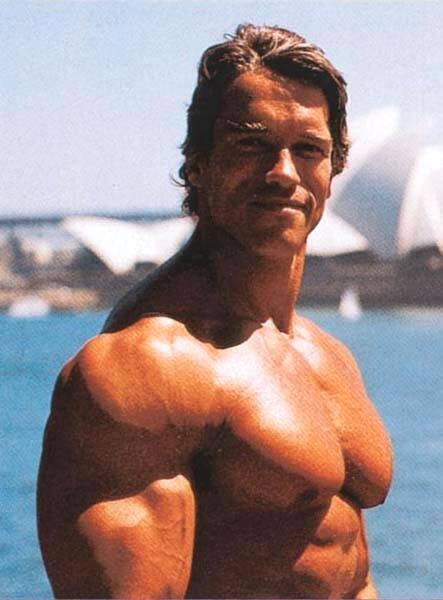 Arnold schwarzenegger body building jpg