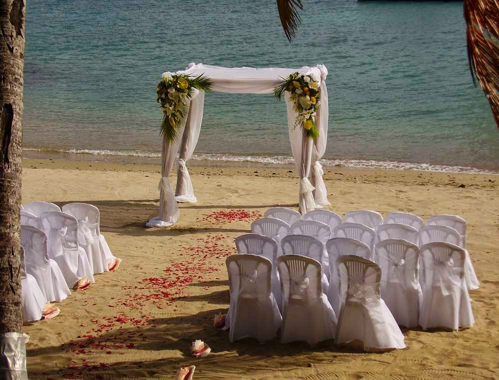 DIY Wedding Arch Decoration Design Ideas Pictures hd