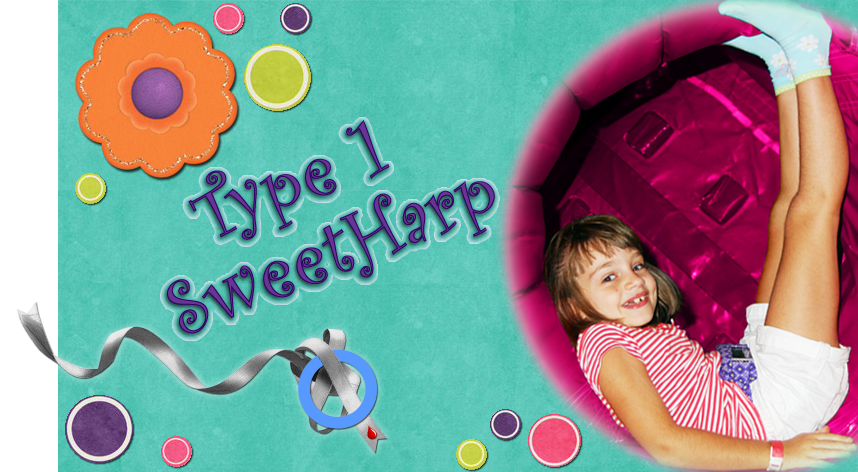 Welcome to Type 1 SweetHarp!