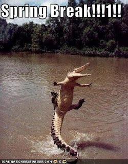 Gator jumping