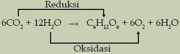 reaksi reduksi dan oksidasi
