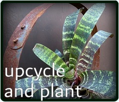 what's new in the dg shop?
