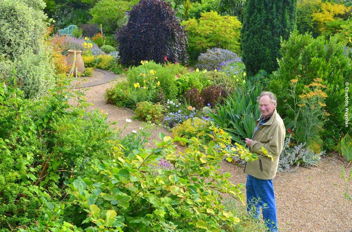 John Brookes In His Garden Early This Morning