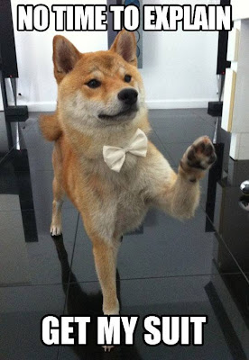 No time to explain, get my suit. Dog with a bowtie.