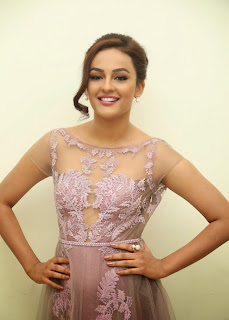 Actress Seerat Kapoor Pictures in Long Dress at Tiger Audio Launch 9.JPG