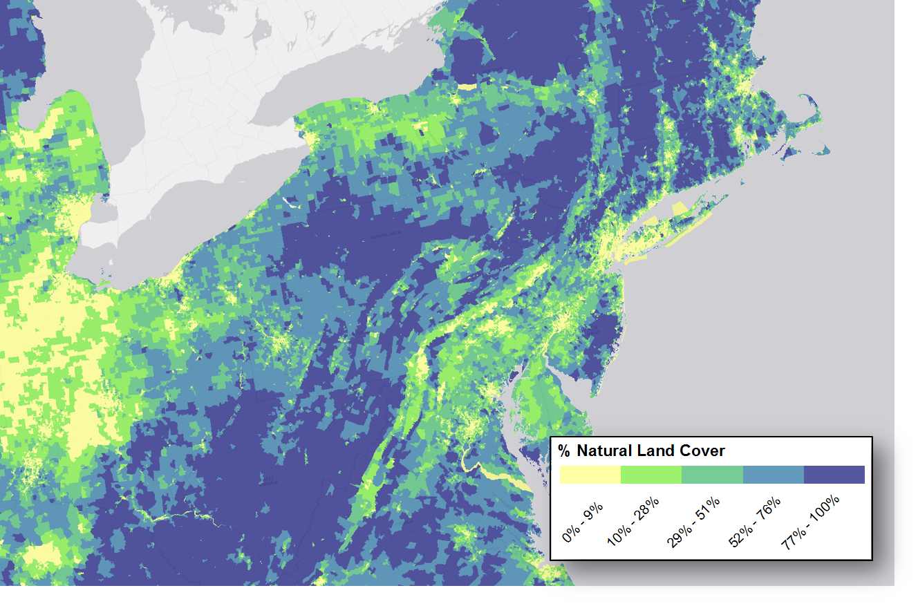 NLCD 2006 summarized by Census Block Group | Letters from the SAL Census Block Group Map on
