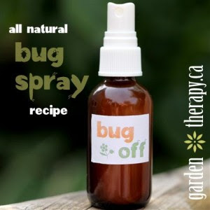 How To Make Homemade Natural Bug Spray