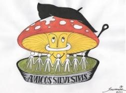 AMICUS SILVESTRIS