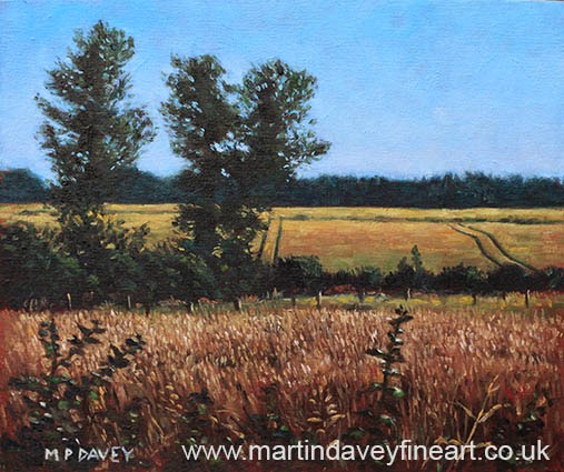 Dorset Countryside Golden Fields in Summer oil painting