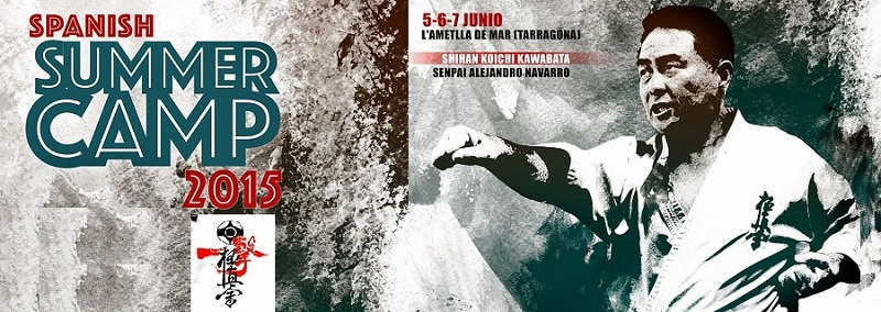 summer camp kyokushin karate 2015 spain