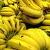 WAJIB TAHU : Fakta dan khasiat tentang pisang yang mungkin anda tidak tahu
