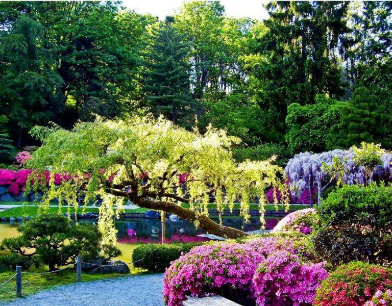 I love egypt beautiful gardens 1 for Beautiful garden pictures of the world