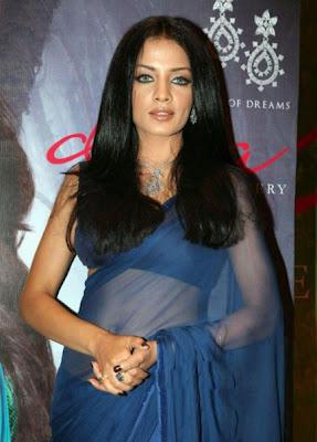 celina jaitley in blue transparent saree latest photos
