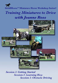 Training Miniature Horses to Drive SET DVD