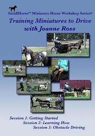 Training Miniature Horses to Drive SET DVD