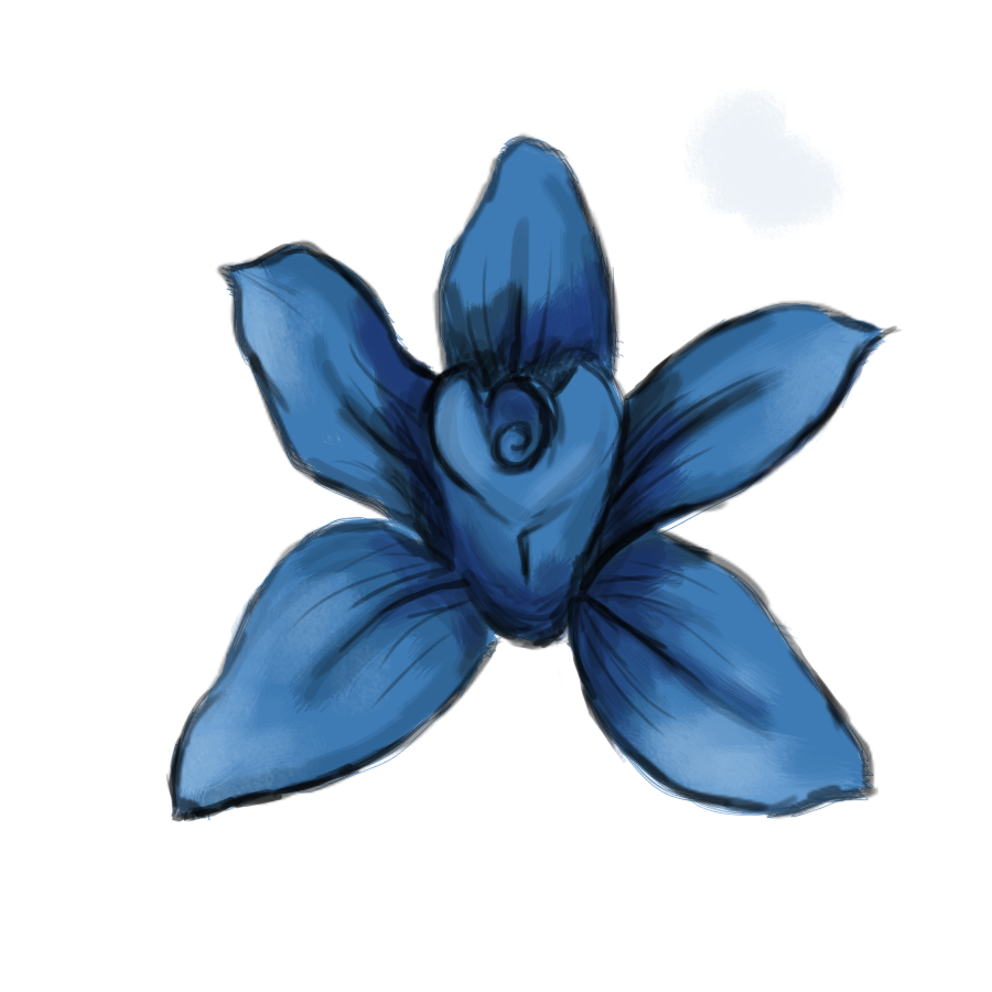 seven blue orchids  drawing a day  a little more blue
