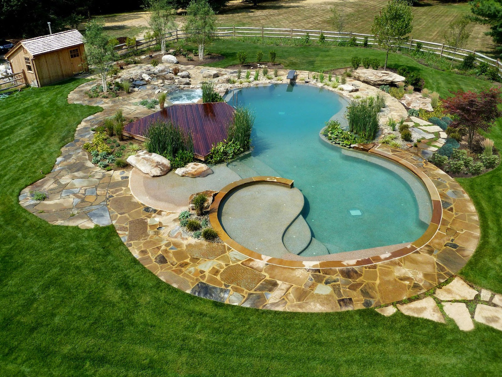 Art now and then swimming pool design for Swimming pond design