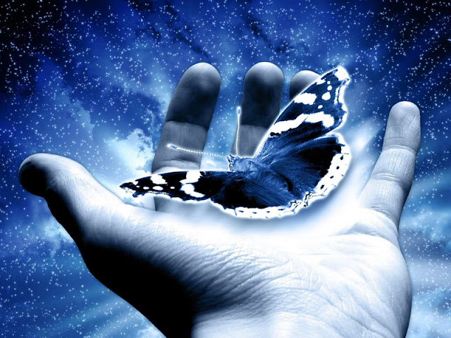 mano y mariposa
