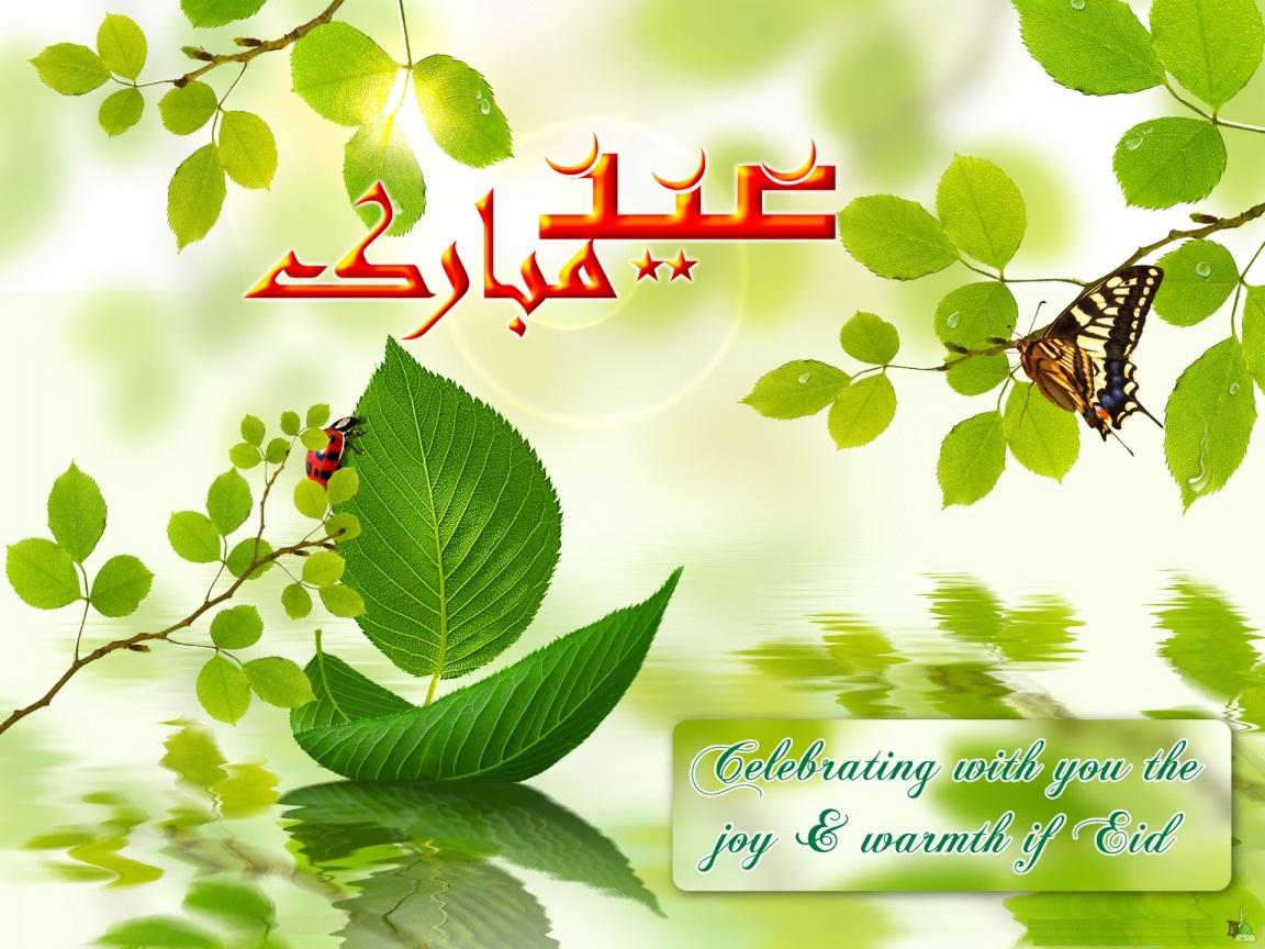 http://2.bp.blogspot.com/-oRtGA-pT3a8/UHpequahy9I/AAAAAAAAGRA/EIjlpeH4-38/s1600/eid-ul-azha-12.jpg