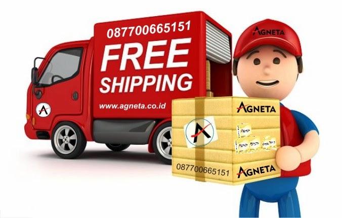 Gratis Biaya kirim Paket Agneta ke seluruh Indonesia