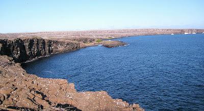 Genovesa Island - Darwin Bay, Galapagos