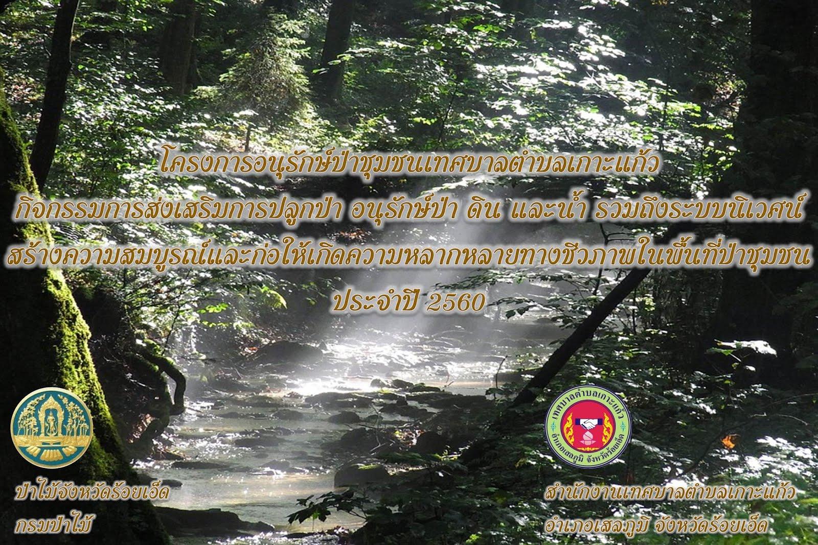 โครงการอนุรักษ์ป่าชุมชน