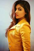 Komal Jha Glamorous Portfolio Stills-thumbnail-19