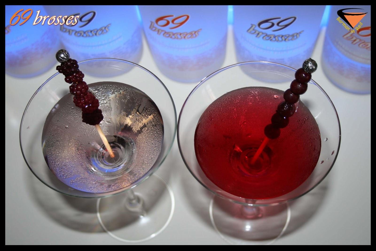 69 brosses gin