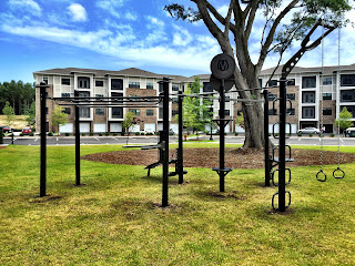 MoveStrong T Rex  outdoor fitness  equipment