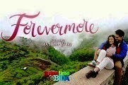 Forevermore Philippine romantic comedy television series directed by Cathy Garcia-Molina, starring Enrique Gil and Liza Soberano, together with an ensemble cast. The series premiered on ABS-CBN and worldwide on The […]