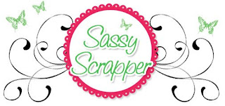 Sassy Scrapper