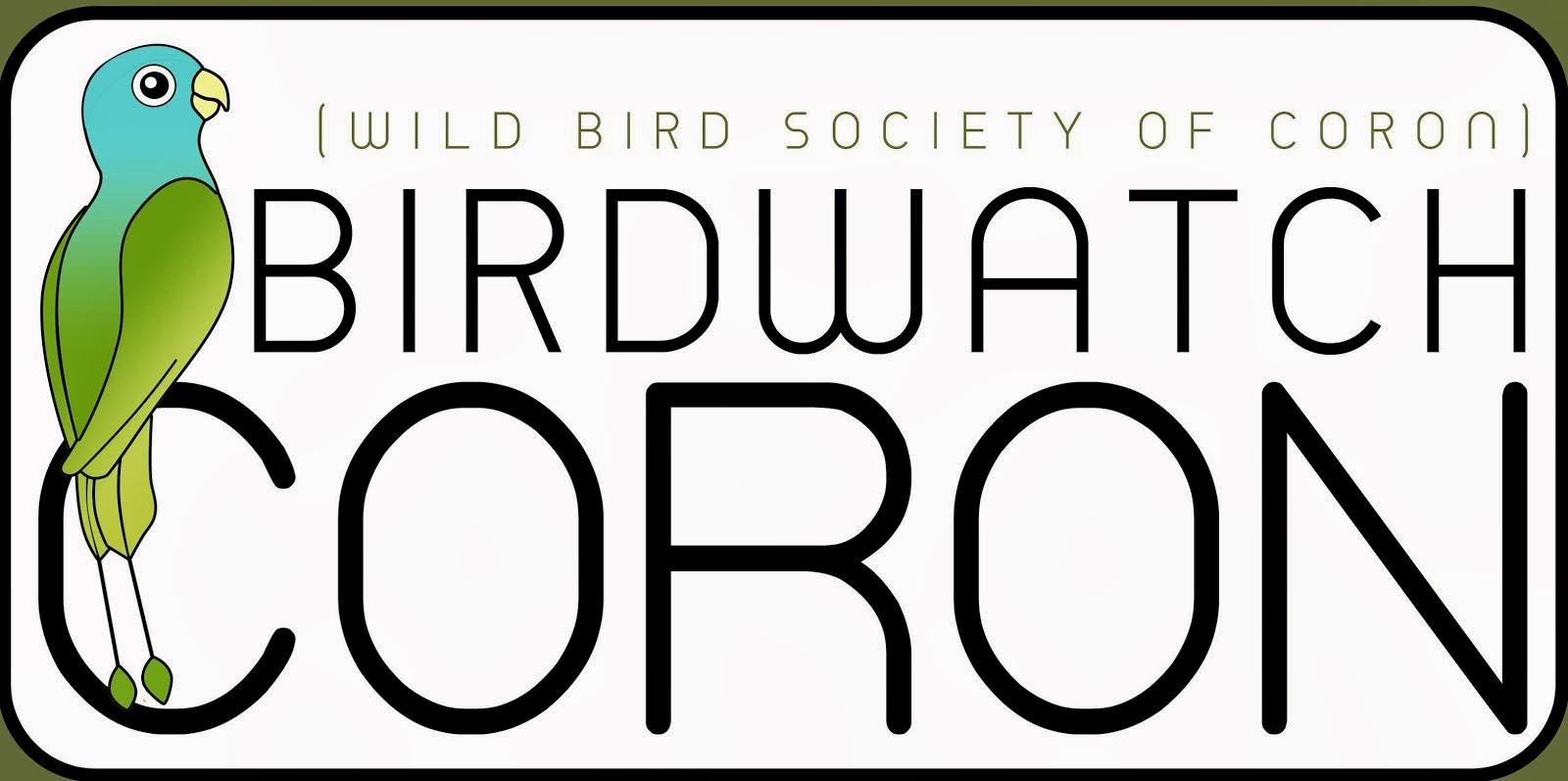Birdwatch Coron