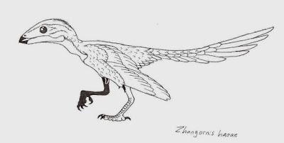 Zhongornis