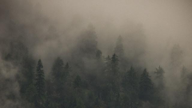 Chochoły. Dolina Otztal, Austria we mgle. fot. Łukasz Cyrus