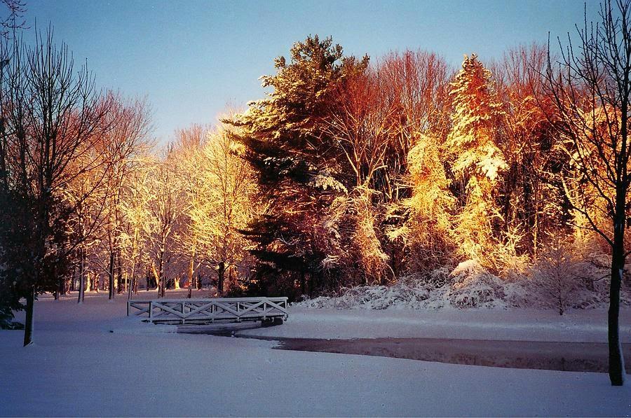 http://fineartamerica.com/featured/dobbs-park-terre-haute-indiana-r-john-ferguson.html