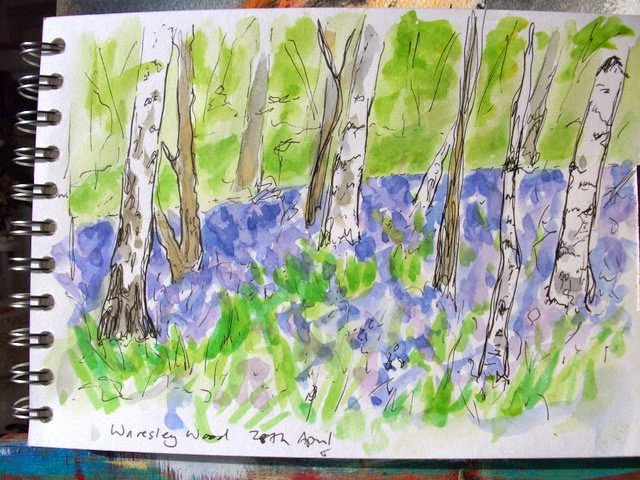 bluebell wood watercolour sketch