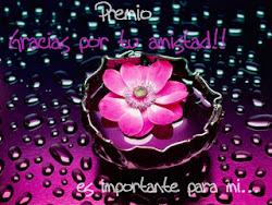 PREMIO CONCEDIDO POR GORDITA-LINDA