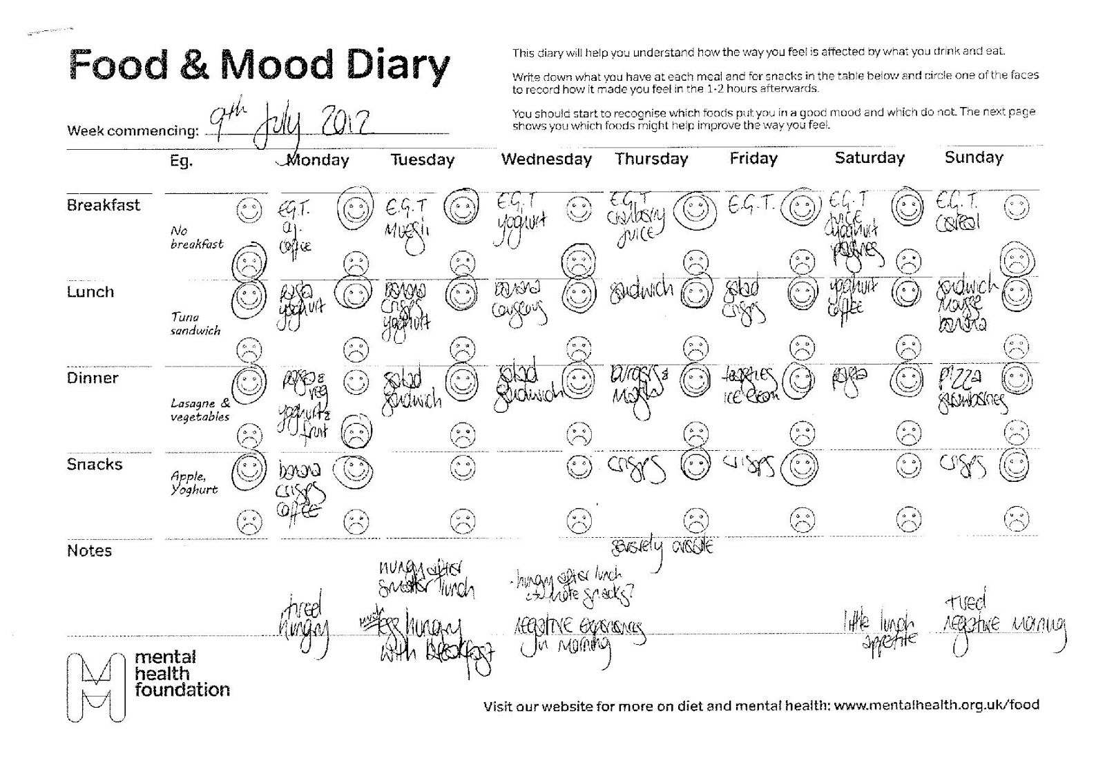 Food_and_Mood_Journal http://felicityistotallypsyched.blogspot.com ...