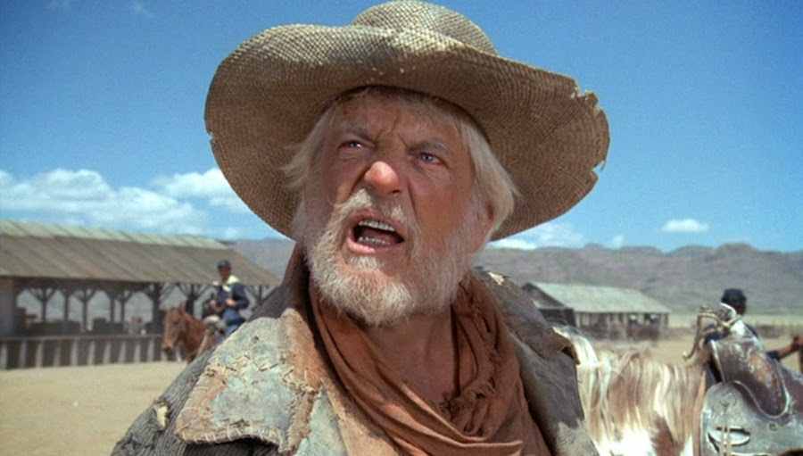 denver pyle young