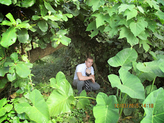 Tristan in the Jungle