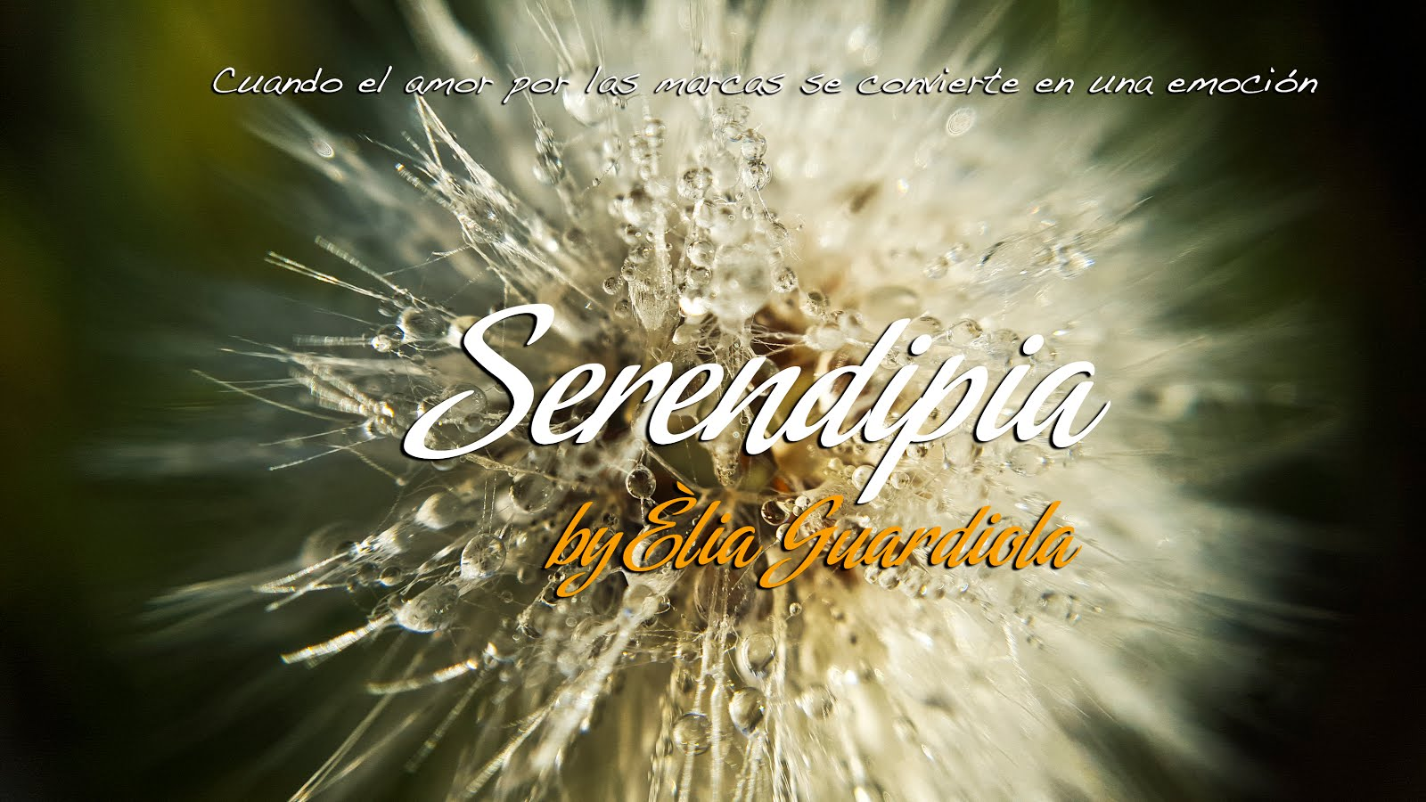 Serendipia by Èlia Guardiola