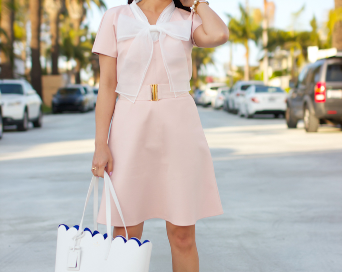 Ann Taylor belted ponte dress Kate Spade lily carrigan scalloped white tote Chicwish bowknow organza top