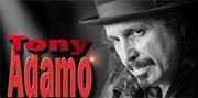 Are You Ready For Tony Adamo?